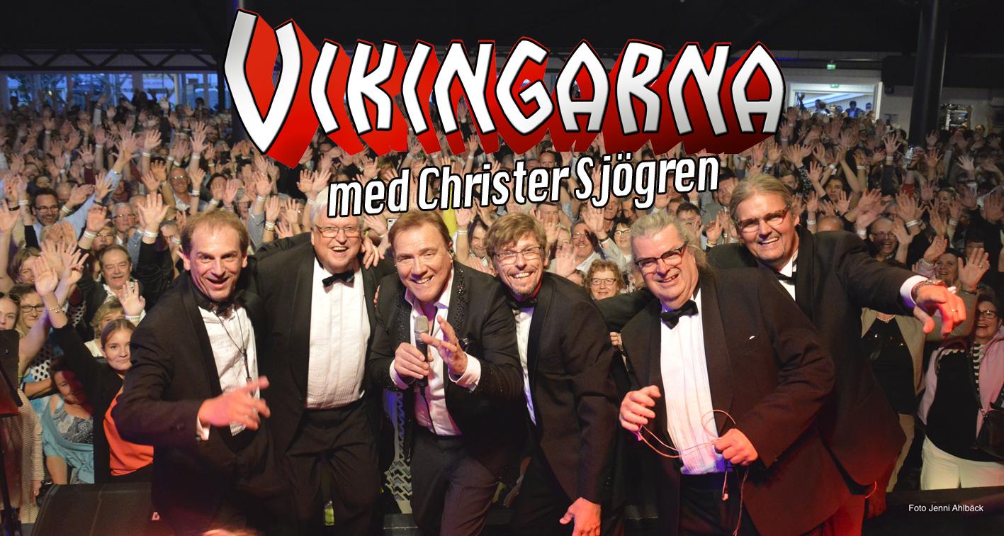 Web Vikingarna copy.jpg